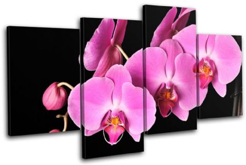 Orchids Flowers Floral - 13-1072(00B)-MP04-LO